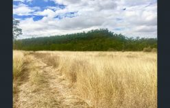 Country Farm close to Rockhampton | Rod Harms Rural