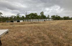 Choice Dalma property | Rod Harms Rural