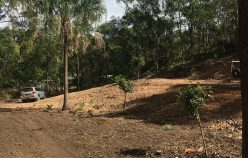 46 Goffages Rd, Mount Chalmers, Qld 4702 | Rod Harms Rural