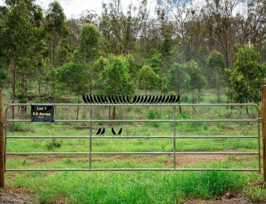 LOT 7, Struck Oil Road | Rod Harms Rural