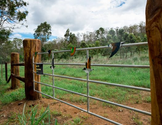 LOT 6, Struck Oil Road | Rod Harms Rural